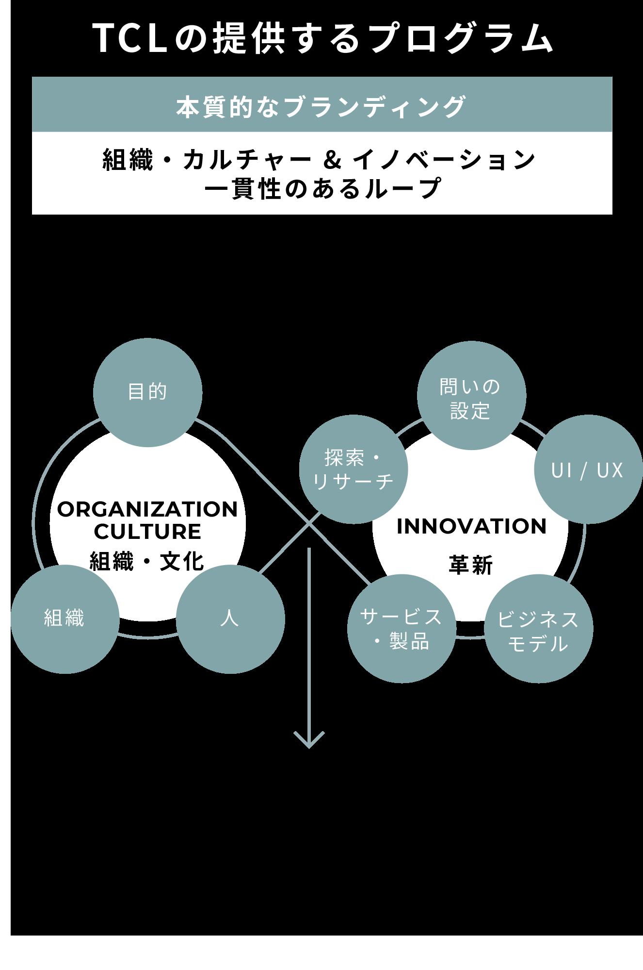 TCLの提供するプログラム